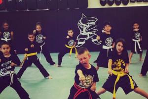 Action Karate Kids Martial Arts