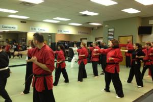 Action Karate Adult Martial Arts