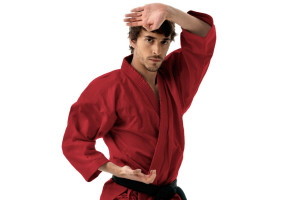 Universal Martial Arts - California Adult Martial Arts