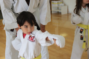 International Karate Association Kids Karate
