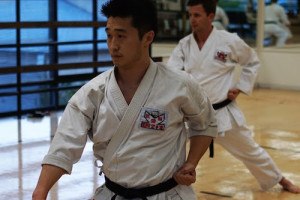 International Karate Association Karate