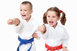 Amerikick Martial Arts Kids Karate