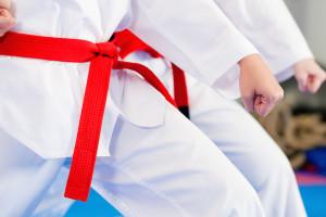 Smithtown Krav Maga  Ryukyu Kempo Renmei Karate