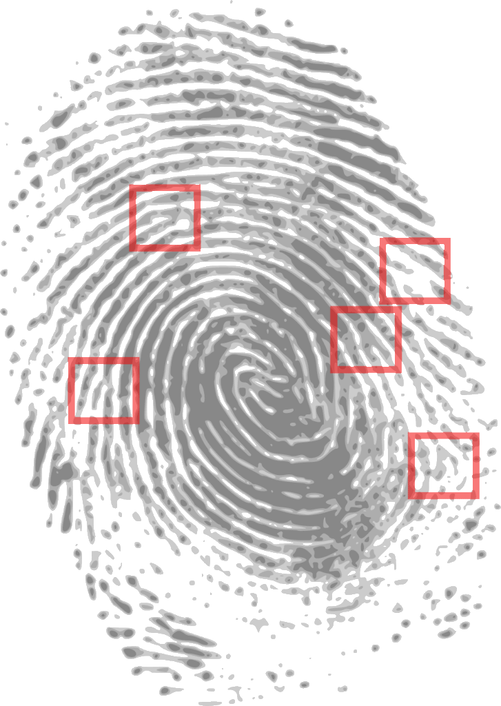 Fingerprint as evidence