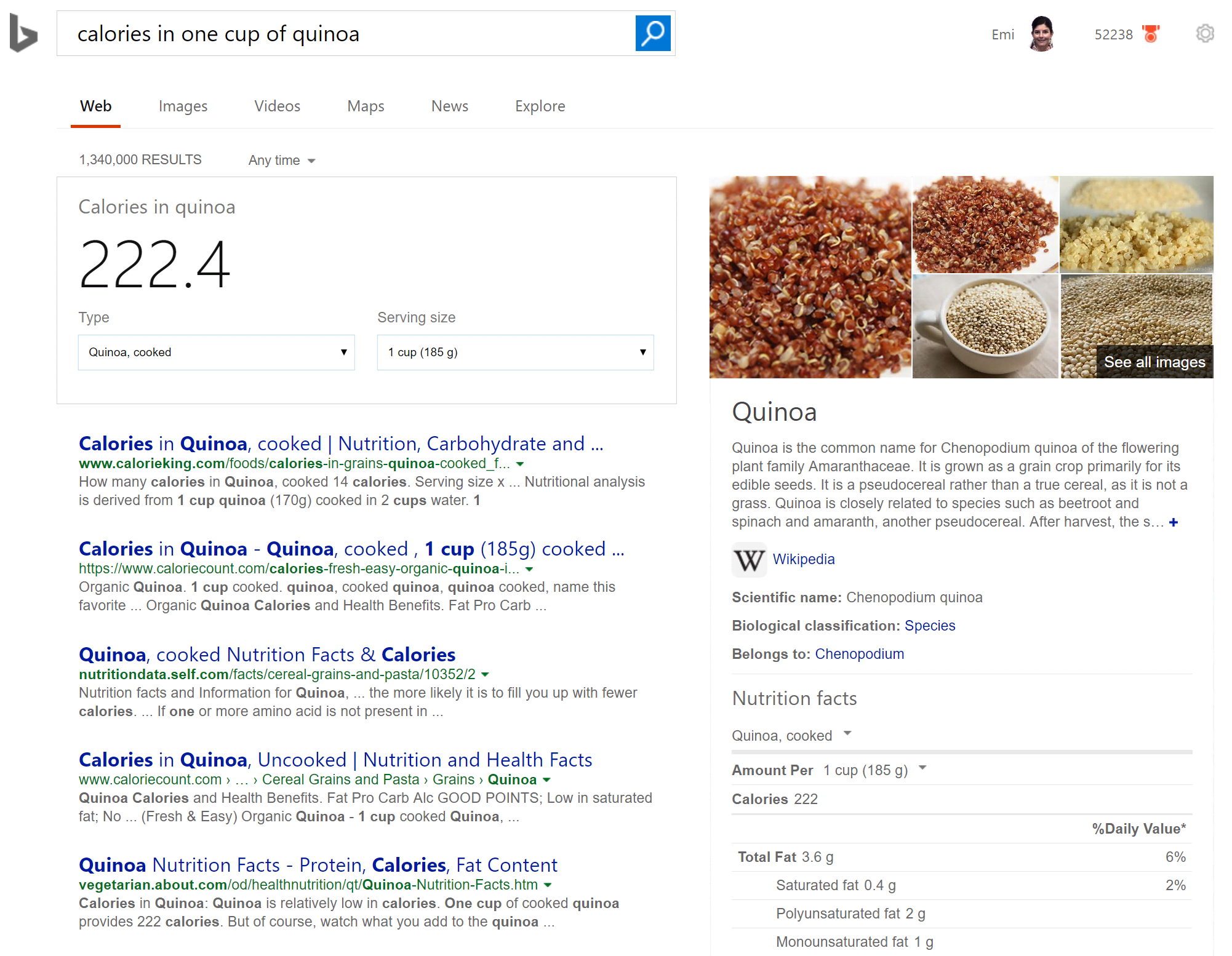 Bing Calories Search