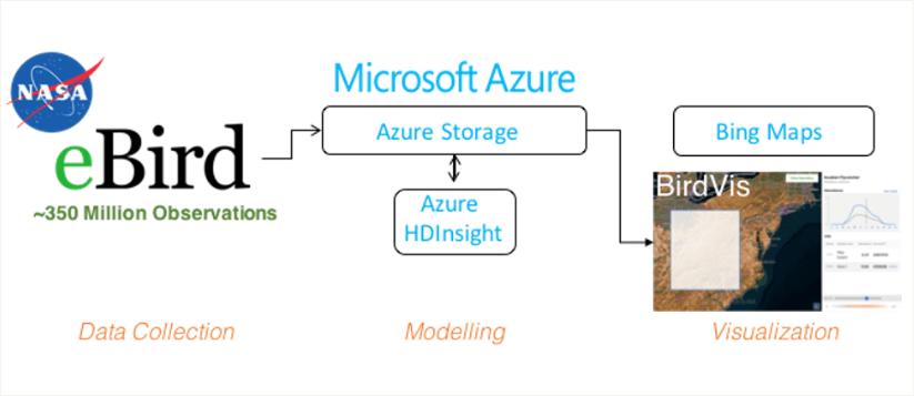 eBird Project architecture diagram on Microsoft Azure HDInsight