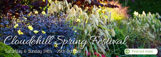Cloudehill Spring Festival