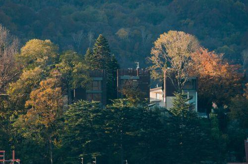 La.casa.sull.albero studio.melesi  8