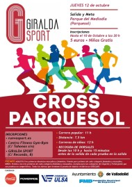 Cross Parquesol