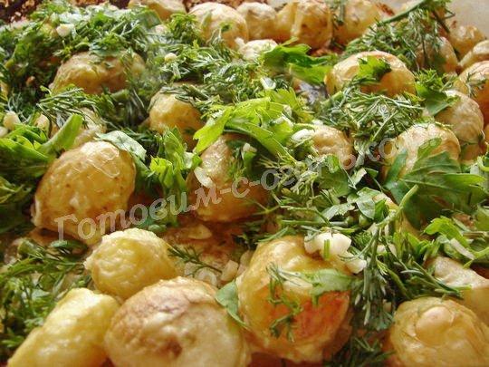 Молодой картофель в духовке со сметаной и чесноком