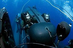 Seals submarine