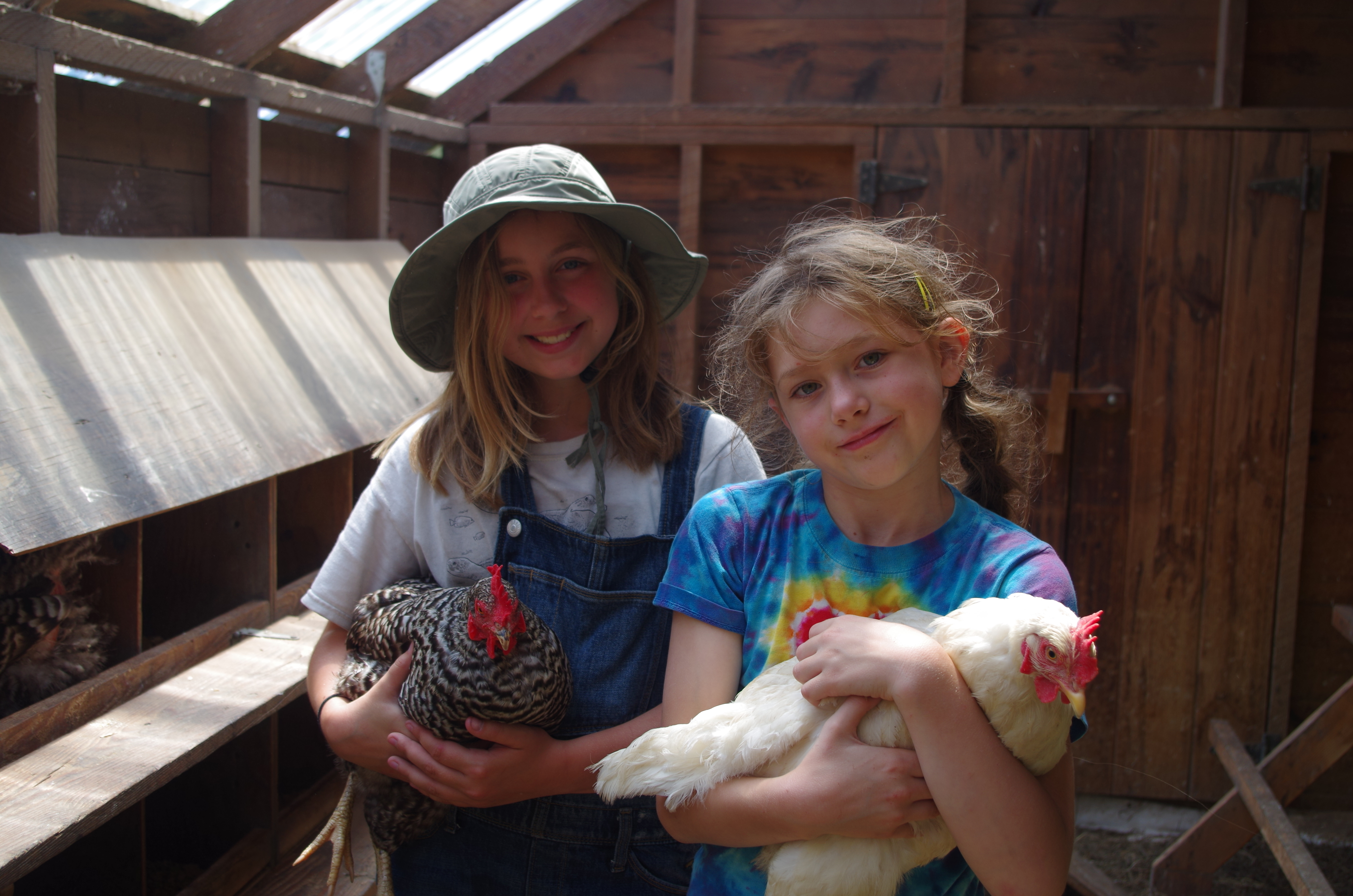 Farm Magic