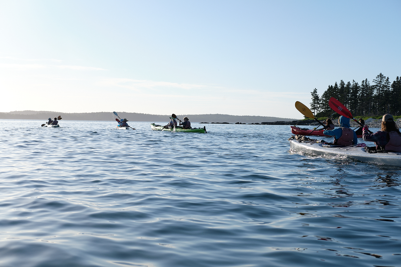 Bold Coast Sea Kayaking Expedition