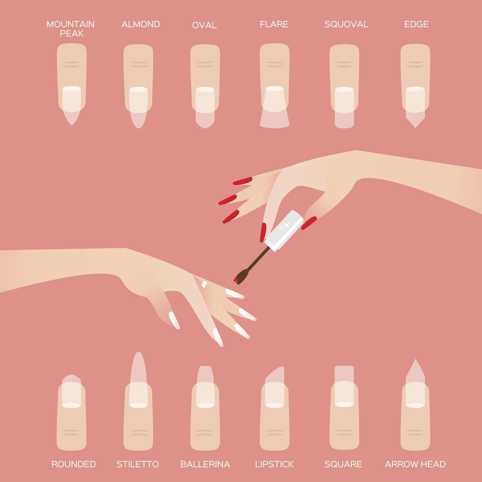 Fingernails shapes
