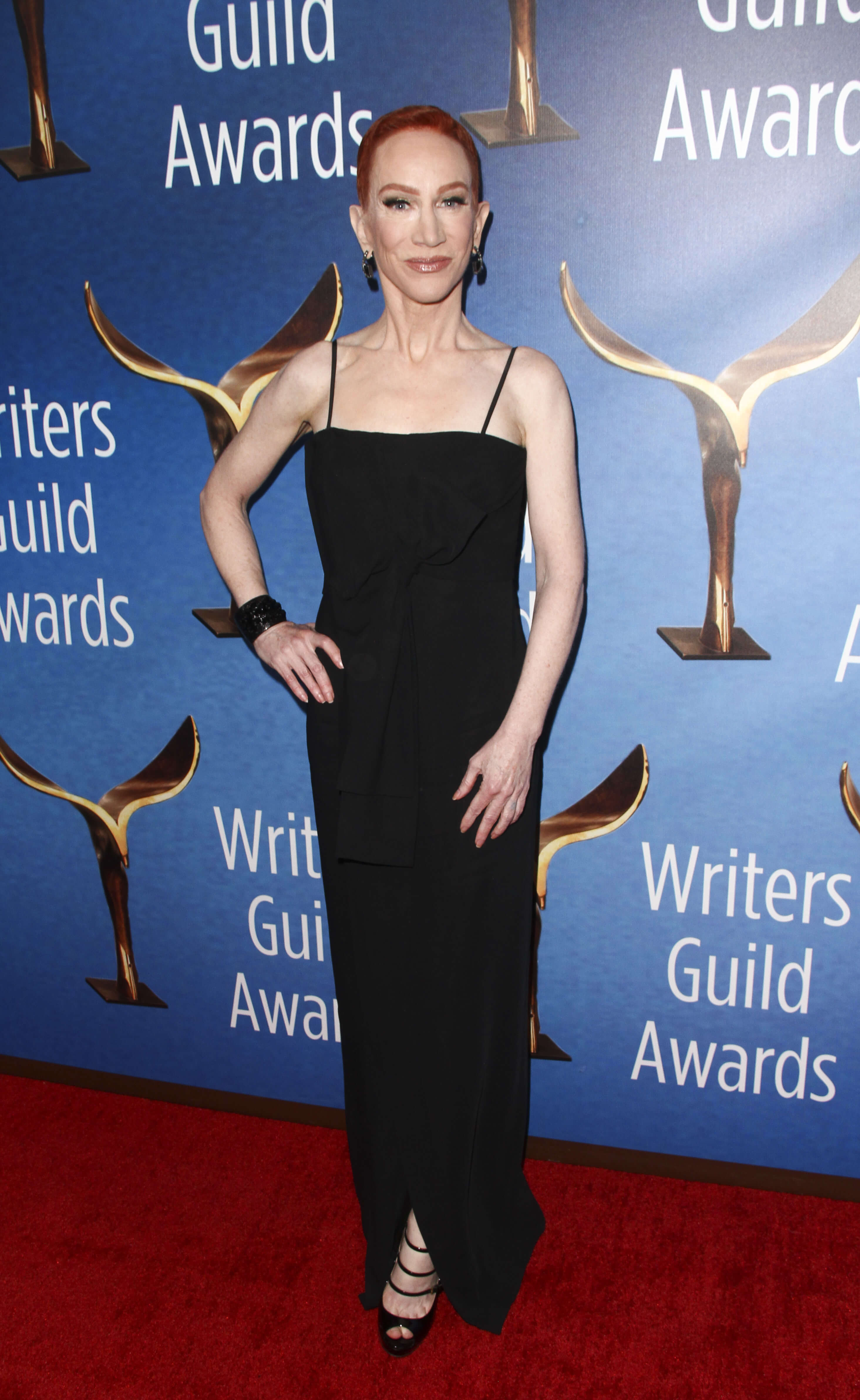 Kathy Griffin long black dress