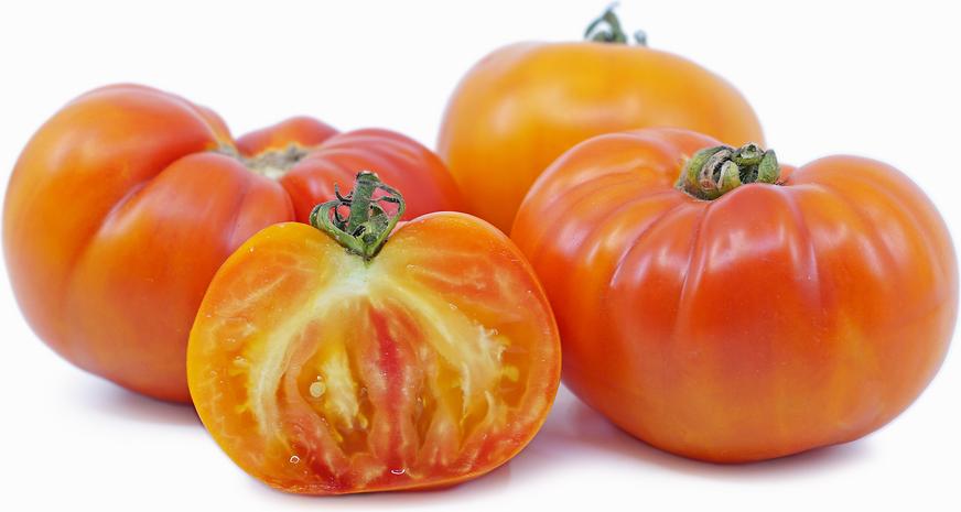 Tomato pink berkeley tie dye