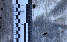 "?Зеленский показал фото дыр, которые ракета ""Тор-М1"" производства РФ оставила на корпусе Boeing 737"