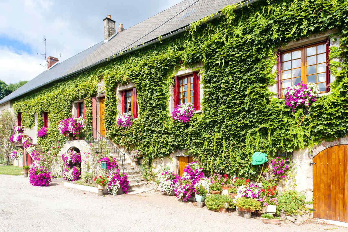 Как можно украсить фасад дома