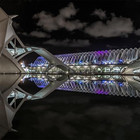 Reflejos (Ciudad de las Artes y las Ciencias (valencia)