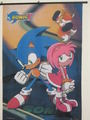 sonic and amy talis