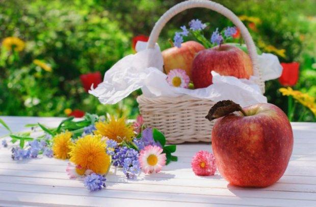 О празднике яблочном спасе