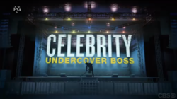 Big boss celebrities
