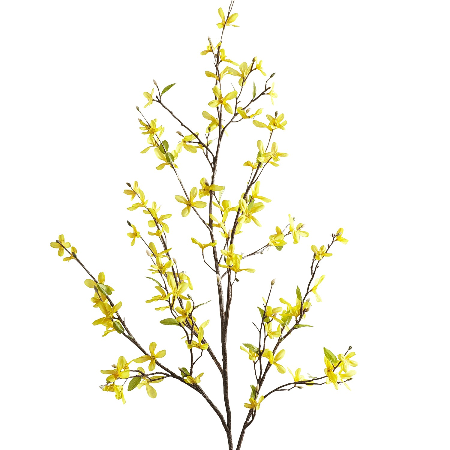 Yellow Faux Forsythia Branch