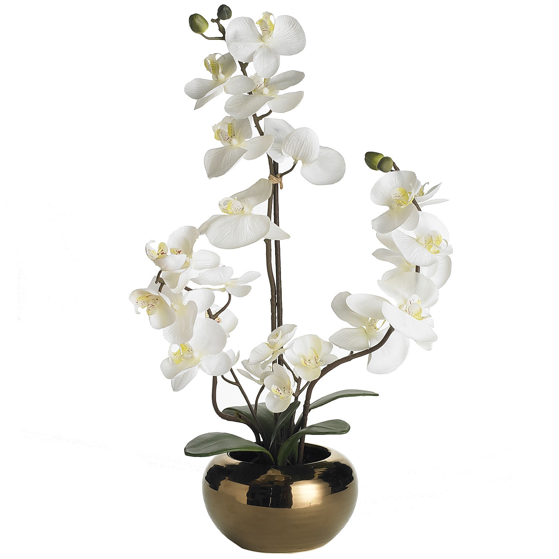 Artificial Phalaenopsis Orchid Arrangement