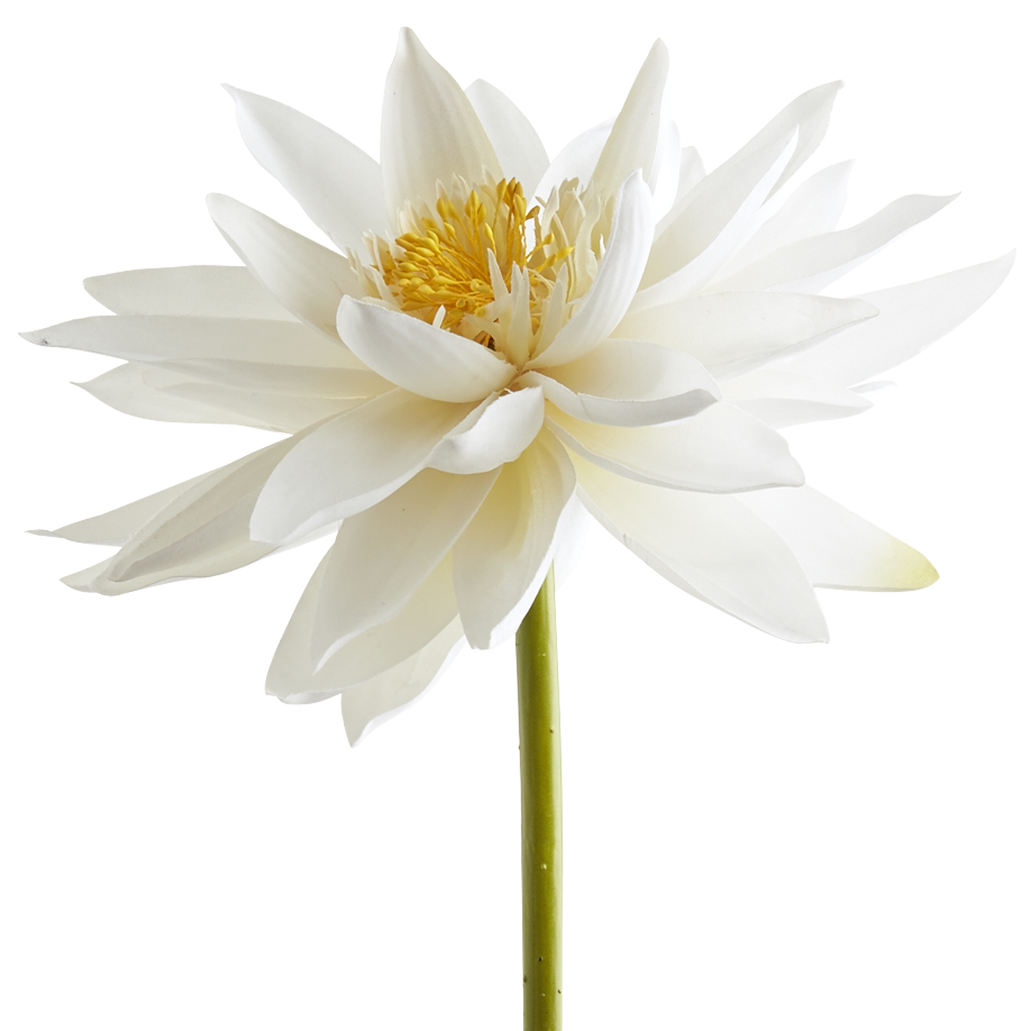 Faux Oversized Water Lily Stem - White