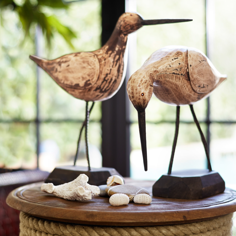 Wooden Sandpiper - Head Up