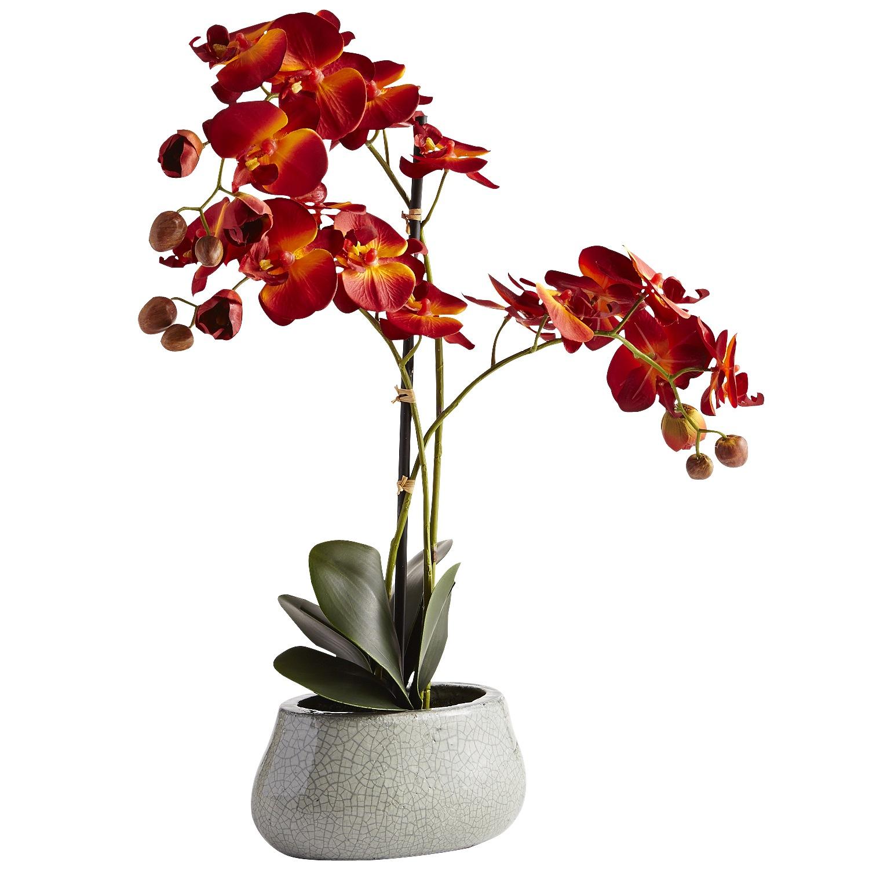 Faux Phalaenopsis Orchid Red Arrangement