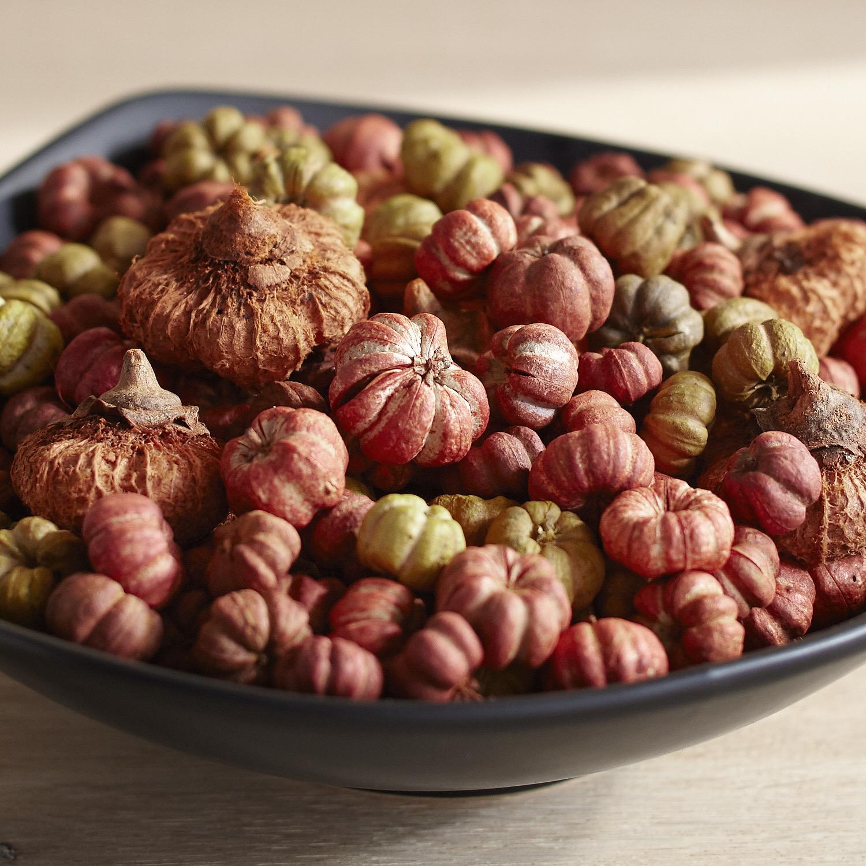 Natural Pumpino Bowl Filler