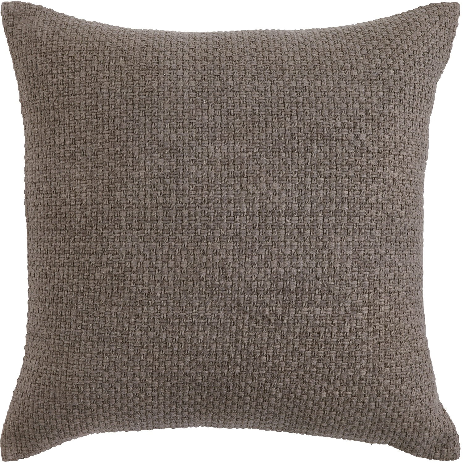 Raleigh Mink Pillow