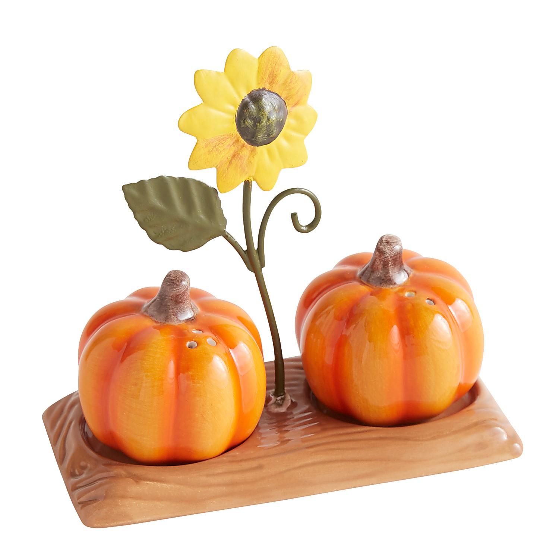 Harvest Pumpkin Salt & Pepper Set