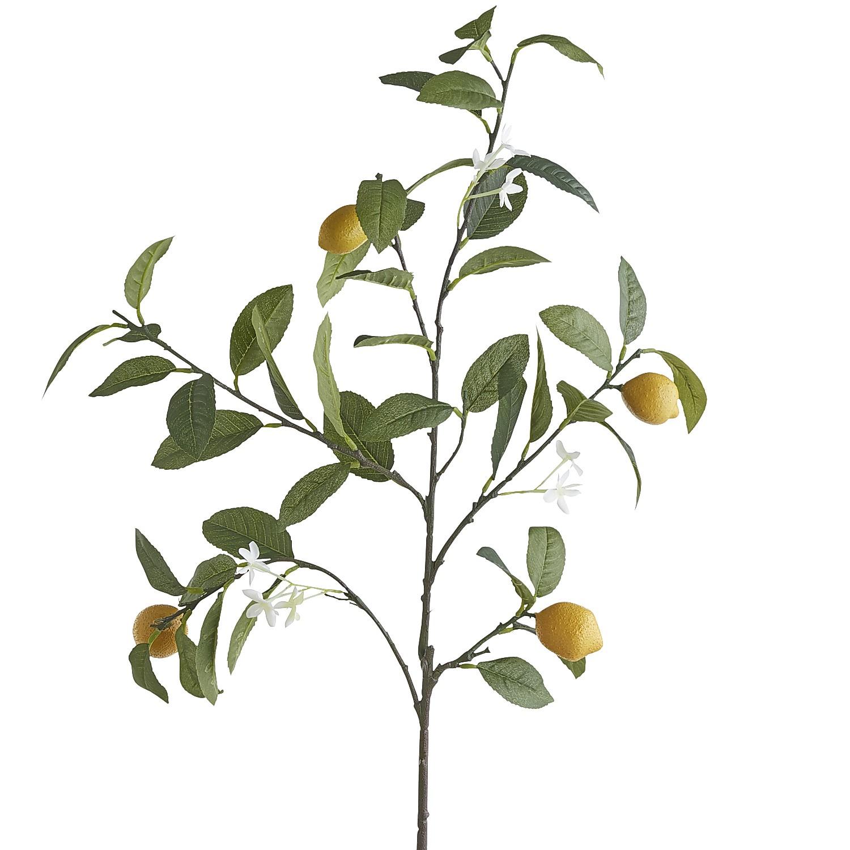 Faux Lemon Branch