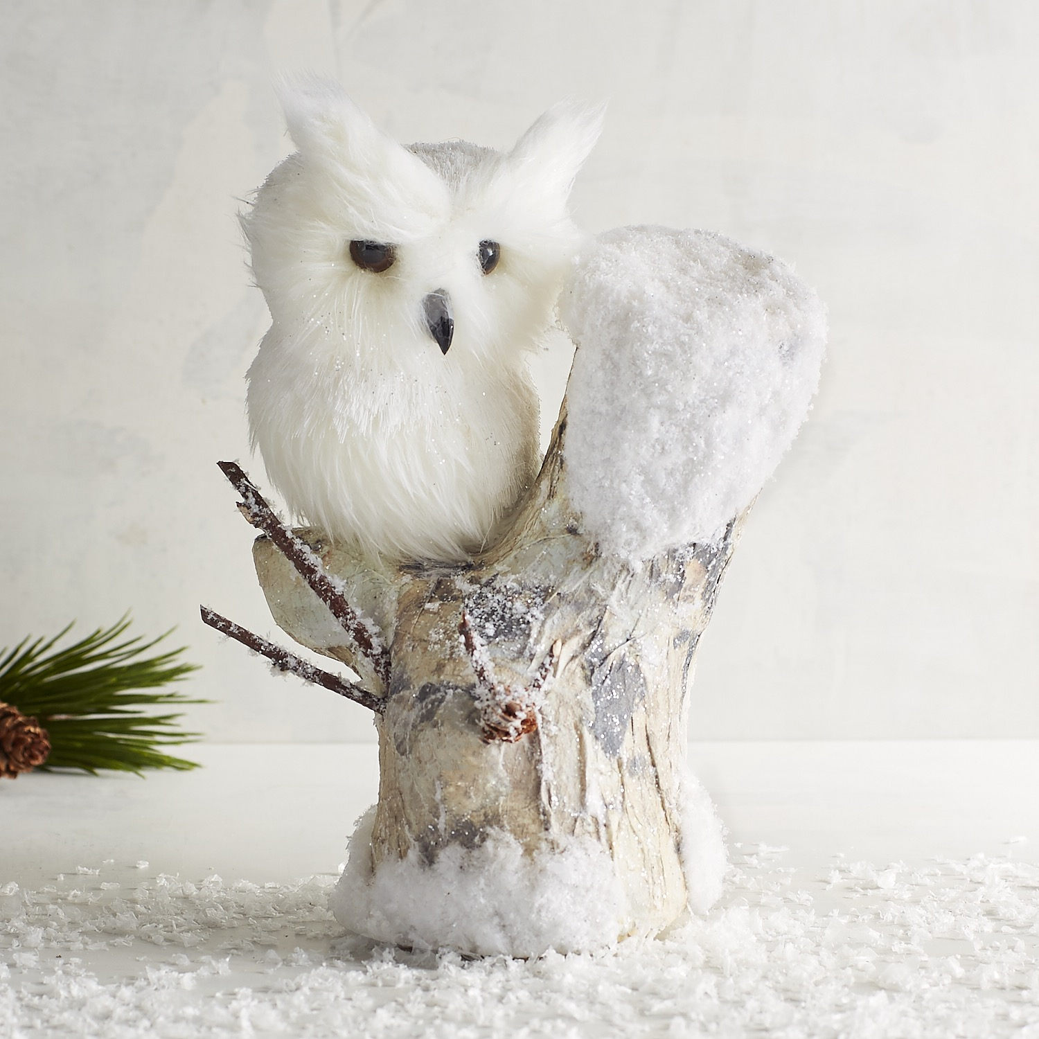 Natural Owl on Tree