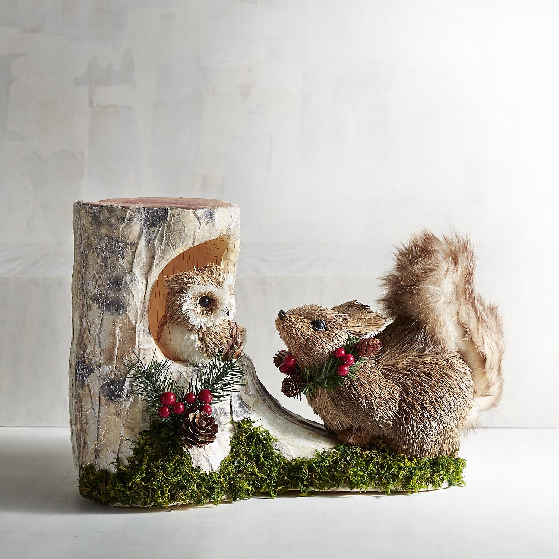 Natural Squirrel & Owl Friends