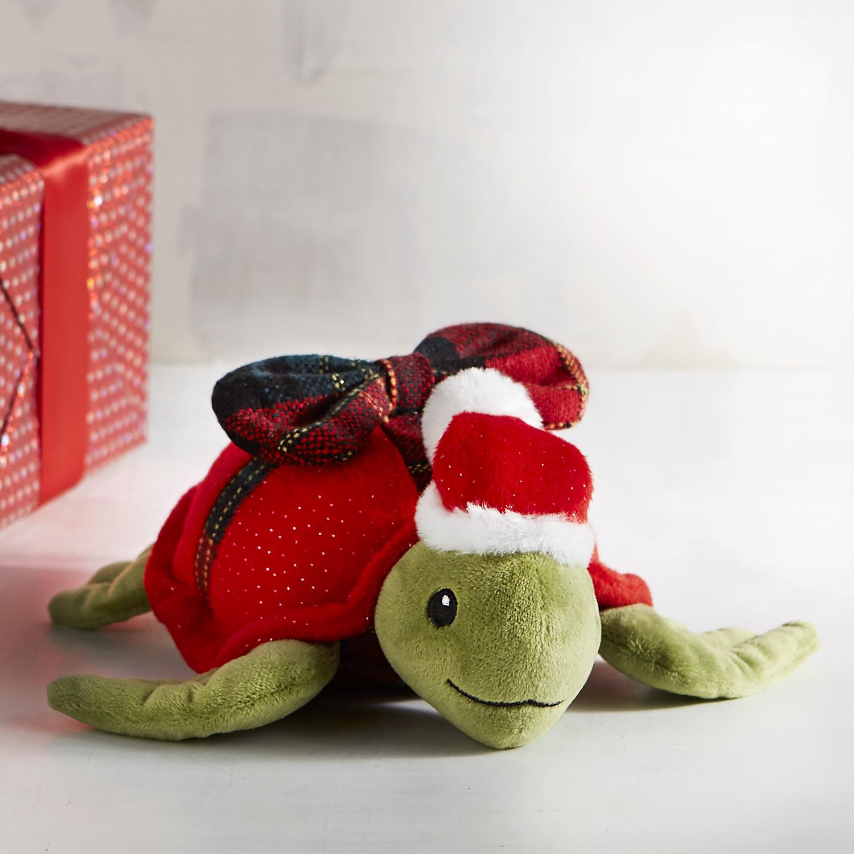 Speedy the Turtle Stuffed Animal