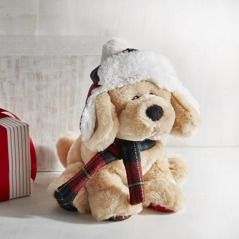 Carter the Dog Stuffed Animal