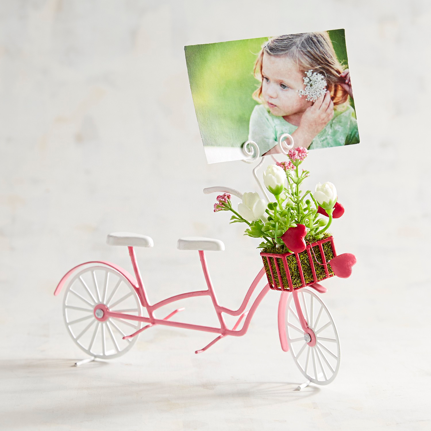 Pink Tandem Bicycle Photo Clip Frame