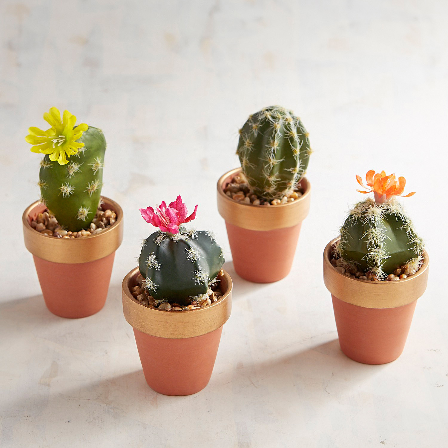 Mini Faux Cactus Arrangement Set of 4
