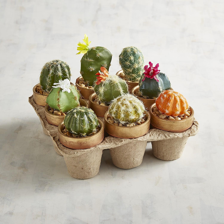 Mini Faux Cactus Arrangement Set of 9