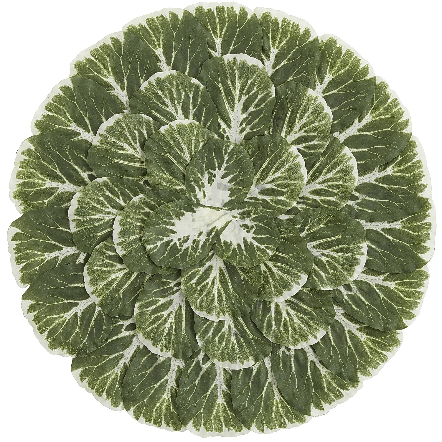 Cabbage Leaves Placemat