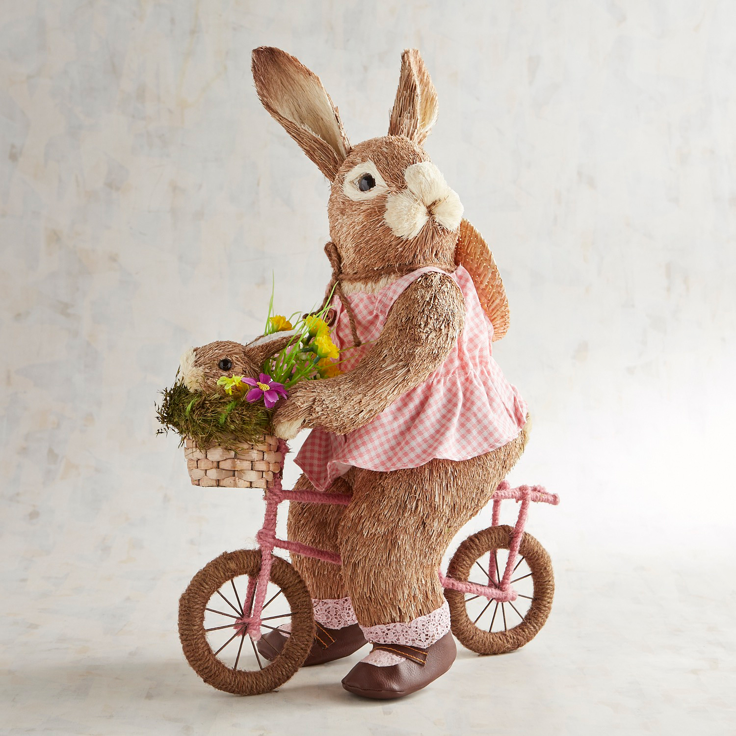 Dottie the Natural Bunny Riding a Pink Bike