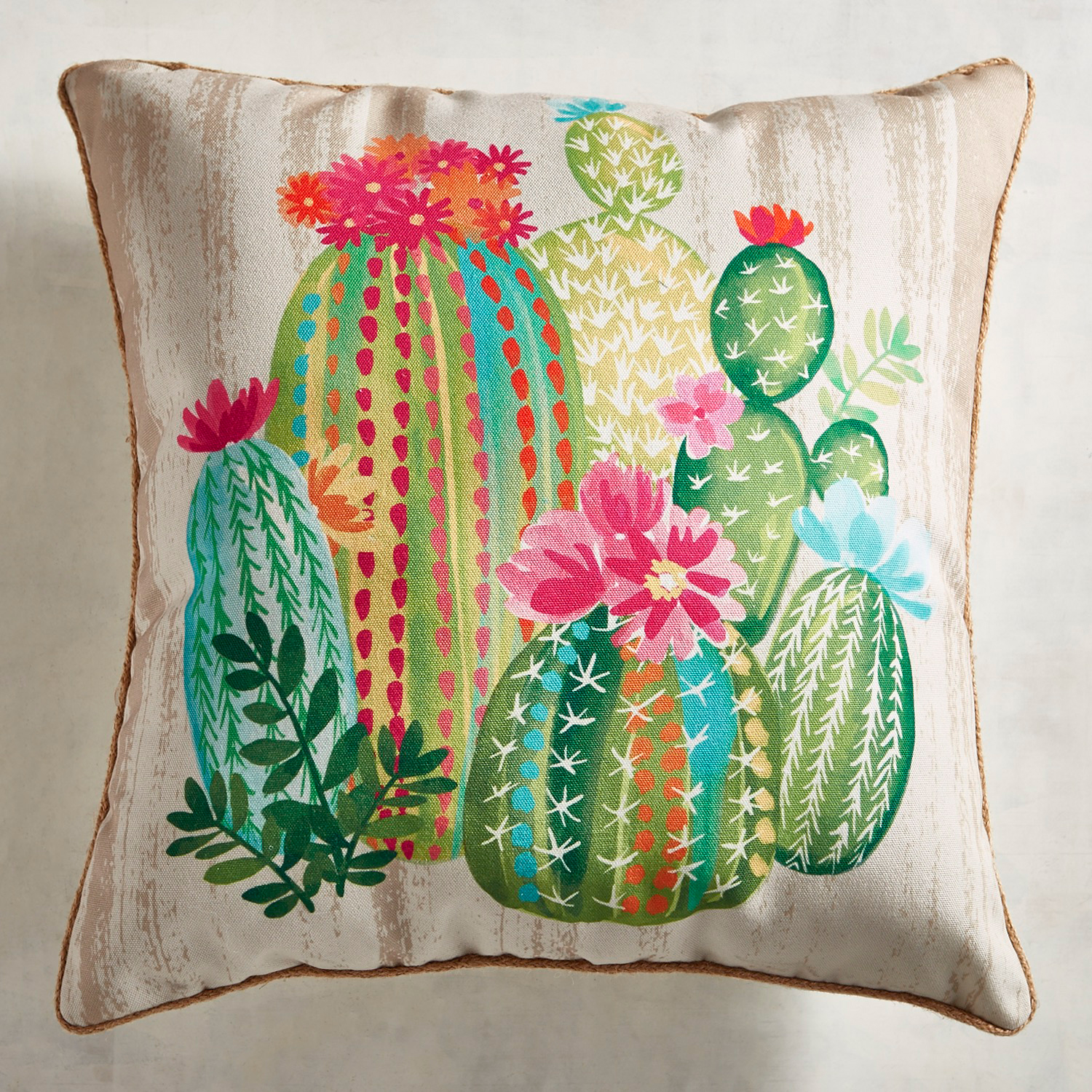 Printed Painterly Cacti Pillow