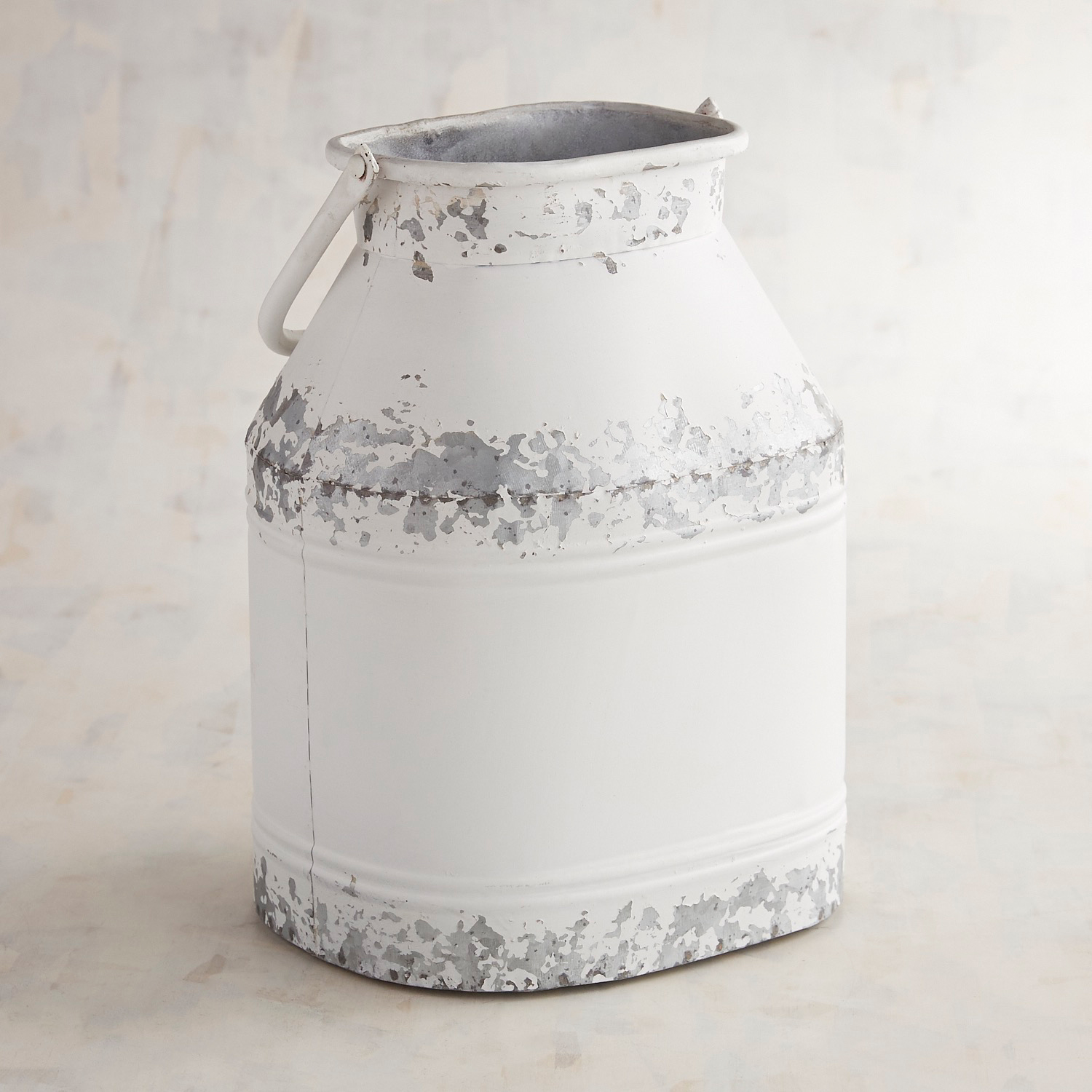 Metal Rustic Can with Handle