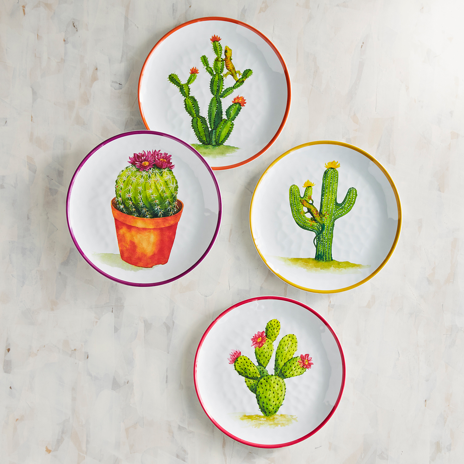 Desert Cactus Melamine Salad Plate Set of Four