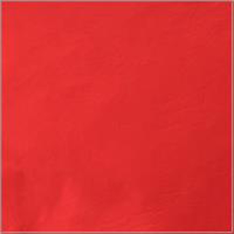 Maddie Red Bean Bag