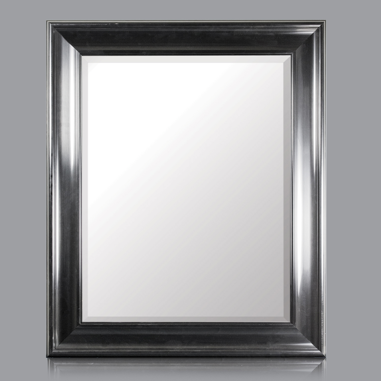 Elisa Rectangular Wall Vanity Mirror