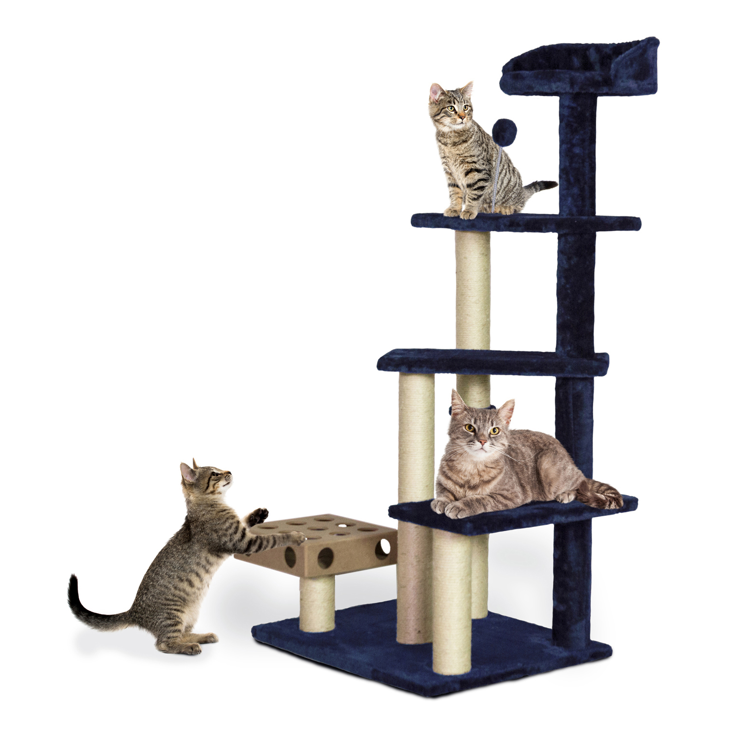 Cat Furniture Play Stairs with Cat-IQ Busy Box in Blue